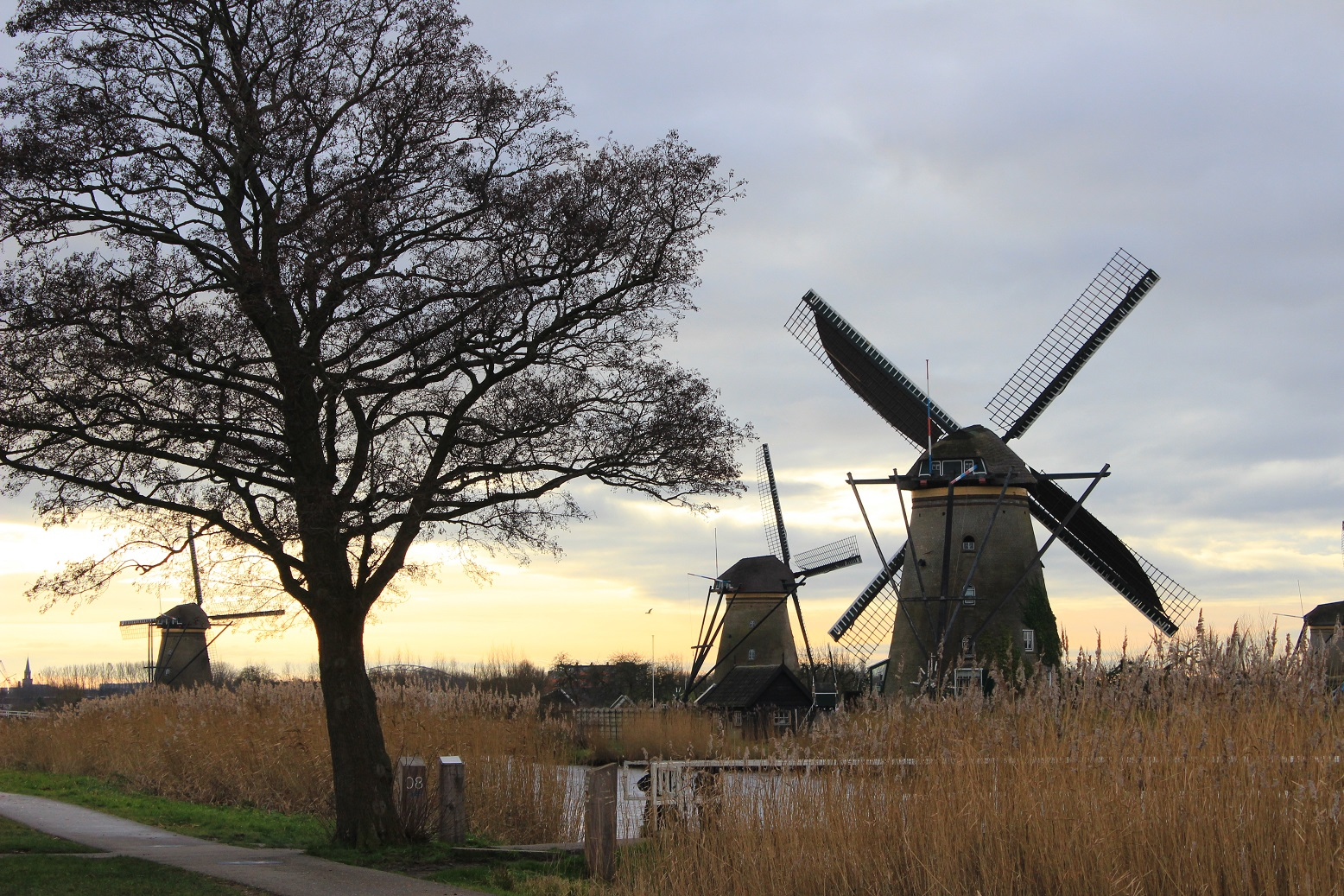 Kinderdijk, Windmühlen, Andreas Kocher