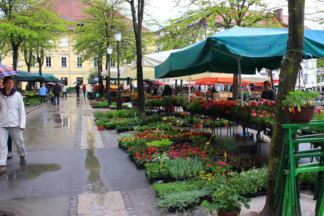 Markt am Vodnik-Platz