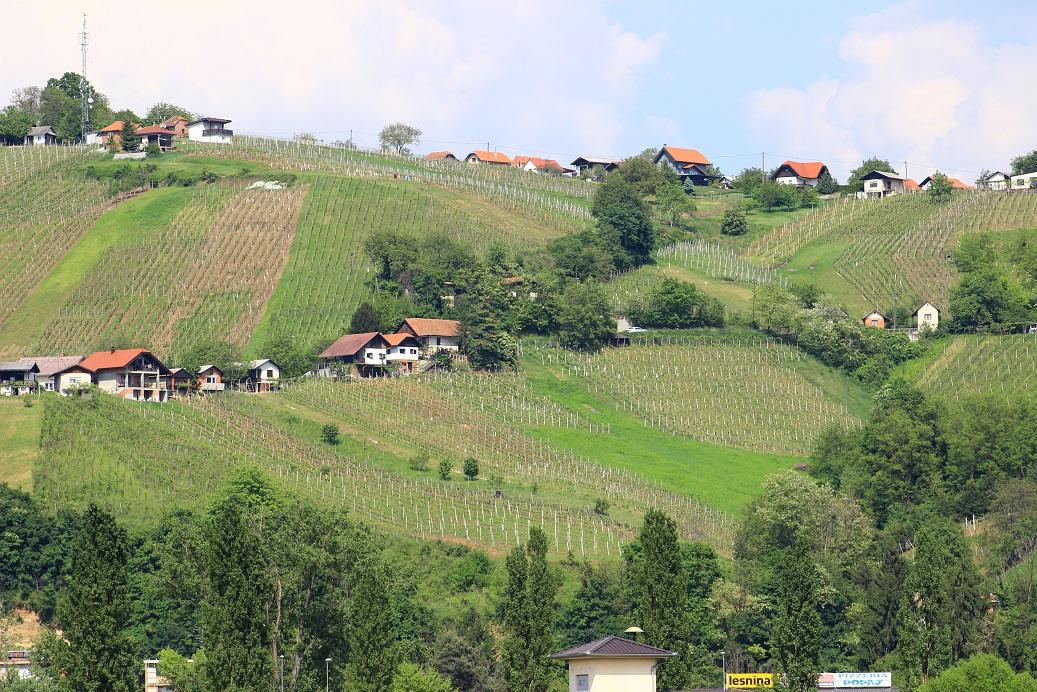 Lendava Weinbaugebiet